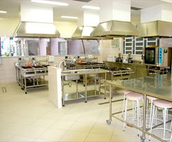 commercial kitchen infestation | Pest Detective