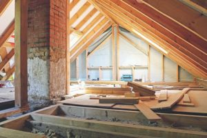termite damage | renovation pest control | house under renovation | rodent extermination | pest detective