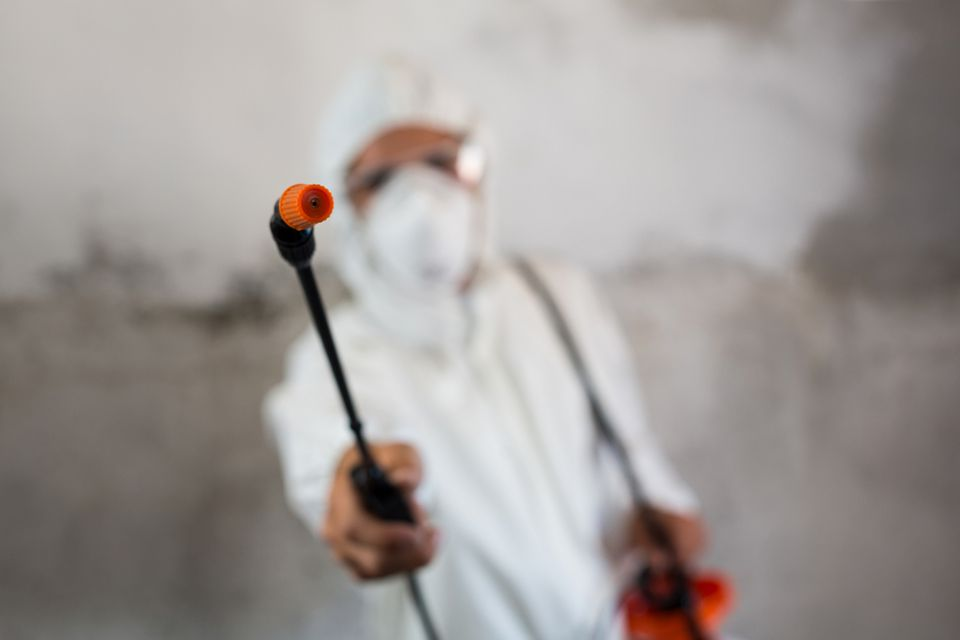 fall pest control | man in chemical suit | pest control | pest detective